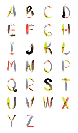 typographics - alphabet from feathers of birds photo