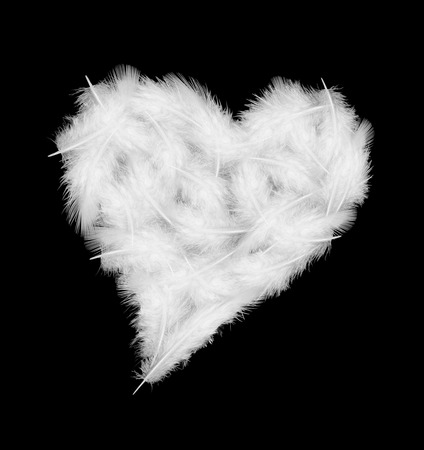 white feathers in the shape of heart on black background photo
