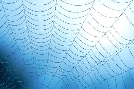 クモの巣水と滴を閉じる