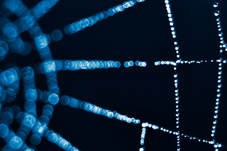 color tone: Spider Web close up, blue color tone Stock Photo