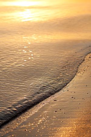 sea beach at sunset in summer