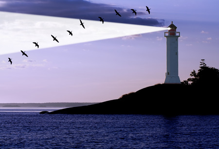 lighthouse and migration gooses at the sunrise Stock Photo