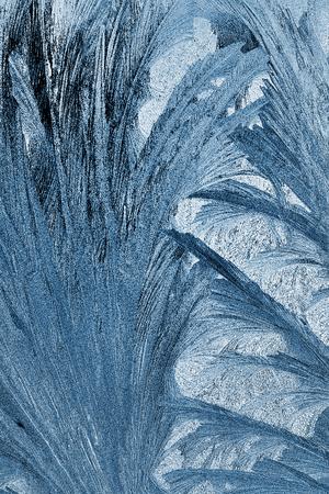 x rays negative: frost pattern on a windowpane closeup, x-ray effect Stock Photo