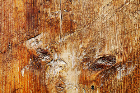 nail bar: old wooden pattern close up, timber grunge background