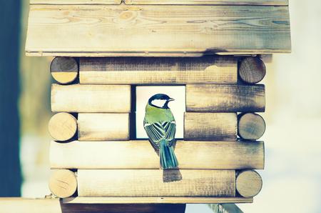 bird feeder: bird feeder in winter day, vintage color tone