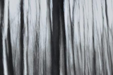 siluetas: fairy forest at night, vertical blur effect