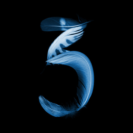 educaton: number zero 3 from pen feathers of birds, x-ray effect