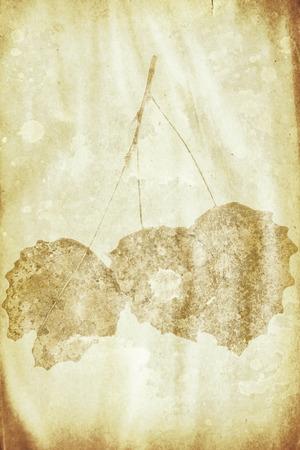 siluetas: grunge paper with autumn leaves watermark Stock Photo