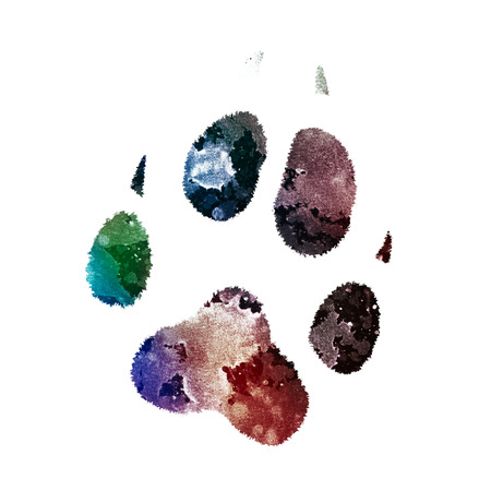dog paw print with overlay of ink splashes texture