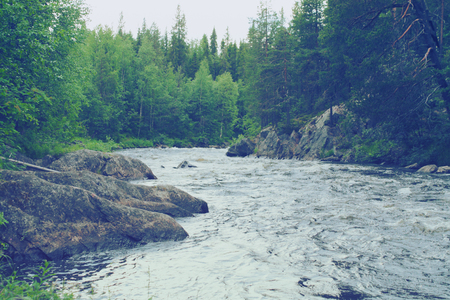 the federation: scandinavian landscape - rapids on the river in Karelia, Rusian Federation