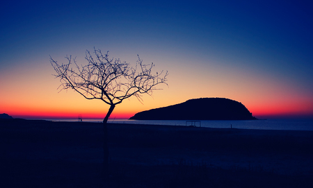 siluetas: silhouettes of a lonely tree and far island in the Japanese sea at sunrise Stock Photo