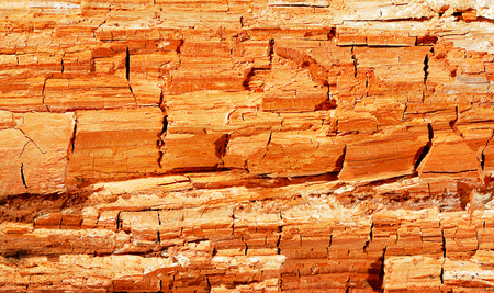 background of a mouldering wood close up Stock Photo