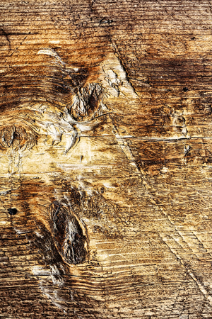 old wooden pattern close up, timber grunge background