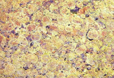 speckle: granite natural background close up