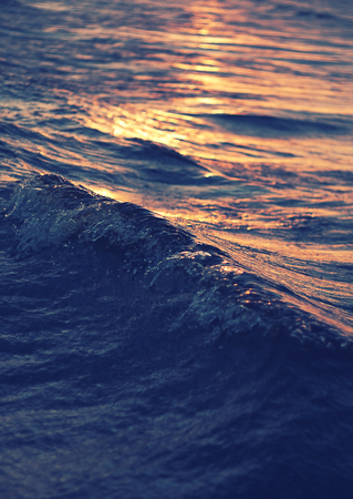 sea wave close up at sunset, low angle view