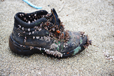 once lost old shoe on a beach