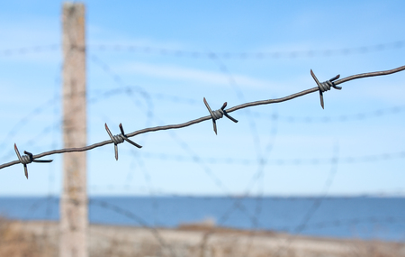 concept of a military theme - barbed wire in a clear day