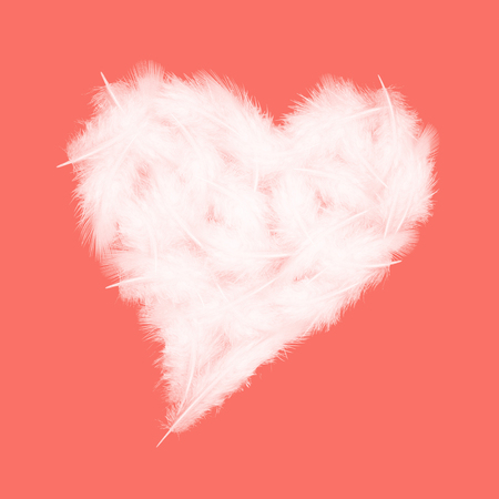 white feathers in the shape of heart on the living coral background, love theme, valentines day concept