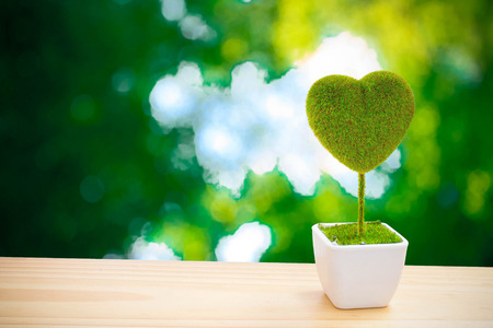 beautiful heart-shaped tree on blur green background photo