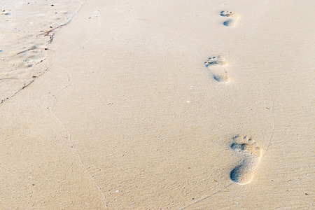 footprints in the sand: footprints on the beach