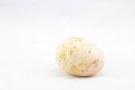 duck egg: dirty duck egg on white background