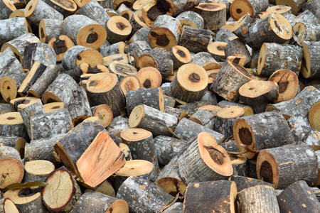 pile of logs: small wood logs pile with any size Stock Photo