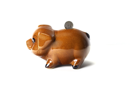 Brown piggy bank isolated on white background, Side view.