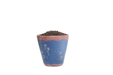 Flowerpot isolated on white background Stock Photo