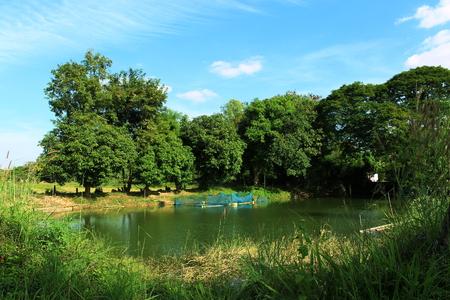 Fish pond on of Thailand.
