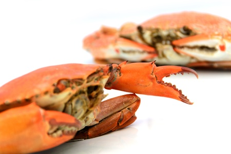 boiled crabs prepared Stock Photo