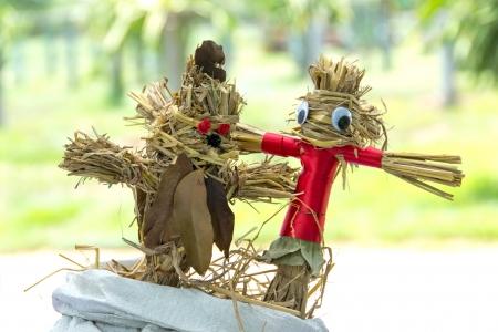 Scarecrow in garden photo