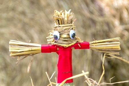 straw puppet Stock Photo - 21574886