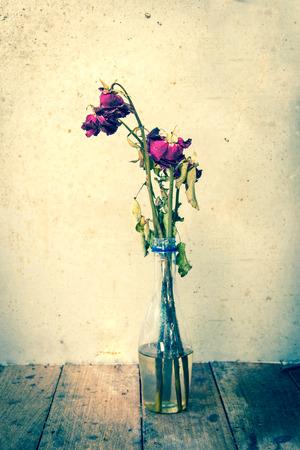 dode bladeren: gedroogde roze bloem