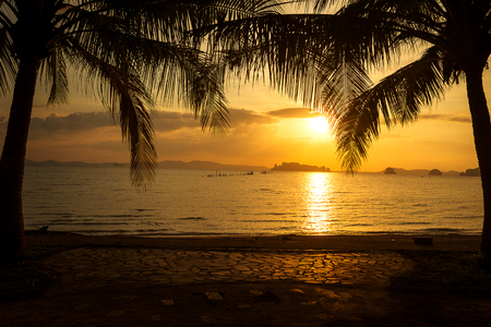 silhouette tropical palm tree with sunset on the beach