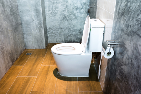 White toilet bowl in a bathroom style loft