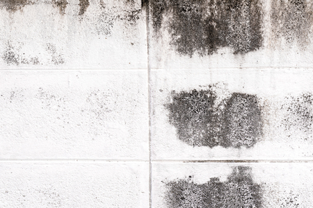Concrete Wall with moss.dirty of wall Stock Photo