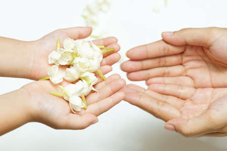 Jasmine flowers in hands of young mother and kid on white background, all ages of Thai people always give or present jasmine flowers to their mothers to pay respect on Mother's Day, August 12 of every year.