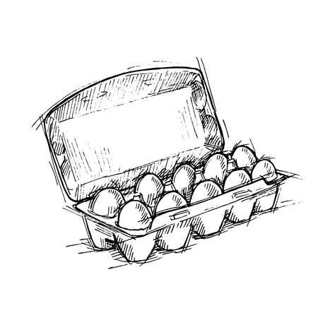 Hand drawn illustration - Box of Eggs on white background. Sketch. Vector.