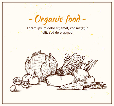 go to store: Hand drawn vector illustration -Fresh vegetables. Supermarket. Grocery store. Organic and vegan food.