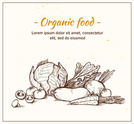 vegan food: Hand drawn vector illustration -Fresh vegetables. Supermarket. Grocery store. Organic and vegan food.