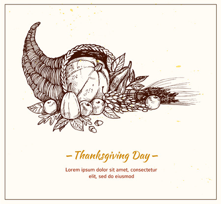 cornucopia: rawn vector illustration - Thanksgiving day. Cornucopia