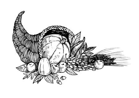 Illustrazione vettoriale disegnato a mano - Giorno del ringraziamento. Cornucopia Archivio Fotografico - 64974033