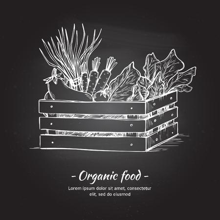 vegan food: Hand drawn vector illustration -Fresh vegetables. Supermarket. Grocery store. Organic and vegan food. Chalk sketch
