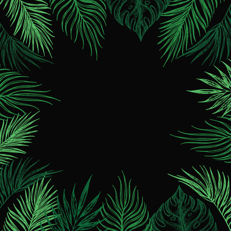 palm wreath: Hand Drawn vector illustration - card with natural elements. Perfect for invitations, greeting cards, quotes, blogs, Wedding Frames, posters and more. Illustration