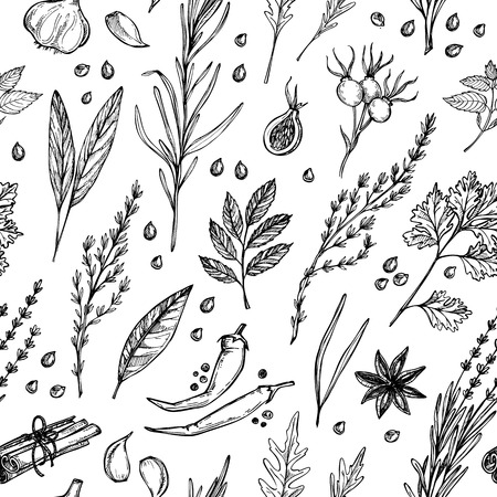 R? Cznie rysowane rocznika tle - zio? Ai przyprawy. Wektor bez szwu deseń. Organiczne rośliny narkotykowe. Ilustracje botaniczne.