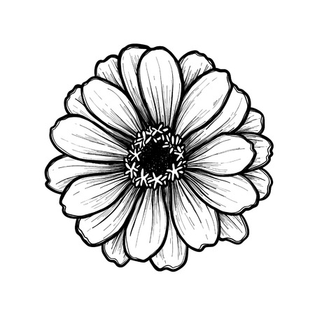 Hand drawn vector illustration - Flower. Floral Tattoo sketch. Perfect for tattooing, invitations, greeting cards, quotes, blogs, posters etc. Vintage collection