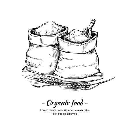 Hand drawn illustration - Organic food. Sacks of flour and grain. Sketch of wheat.