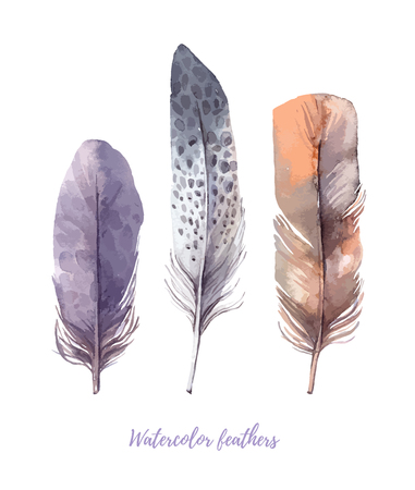 Hand drawn illustration - Watercolor feathers collection. Illustration