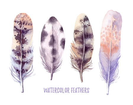 swelled: Hand drawn illustration - Watercolor feathers collection. Aquarelle boho set. Isolated on white background. Perfect for invitations, greeting cards, posters, prints