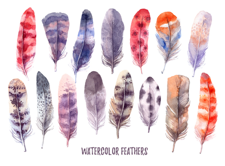 Hand drawn illustration - Watercolor feathers collection. Aquarelle boho set. Isolated on white background. Perfect for invitations, greeting cards, posters, prints